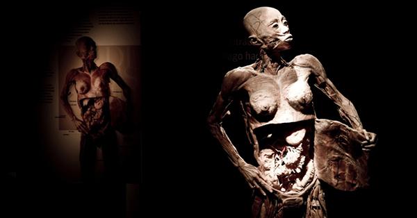 O único corpo de mulher na exposição.